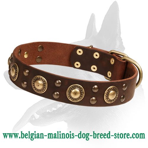 """Space-like"" Belgian Malinois Dog Collar"