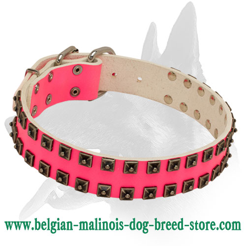 'Cosmo Lady' Belgian Malinois Lovely Decorated Pink Leather Dog Collar