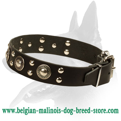 'Rock n Roll' Luxurious Belgian Malinois Leather Dog Collar