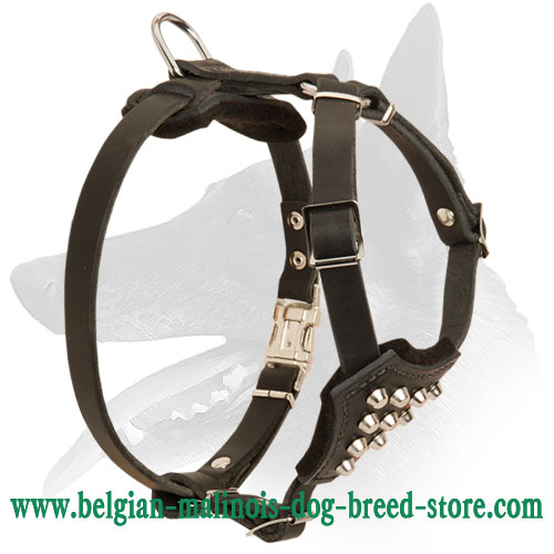 'Noble Puppy' Trendy Designed Belgian Malinois Harness