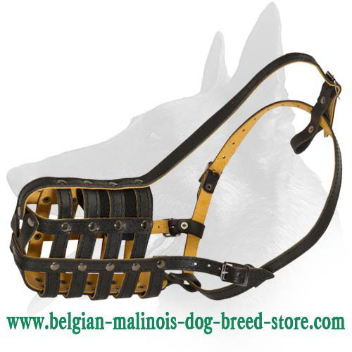 Handcrafted Leather Muzzle for Belgian Malinois