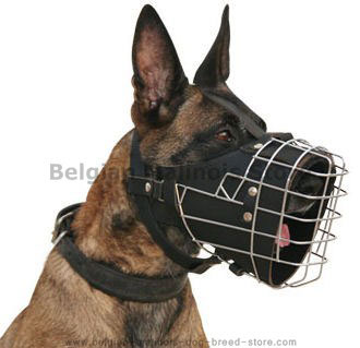 The Newest First-rate Belgian Malinois Full Padded Wire Dog Muzzle