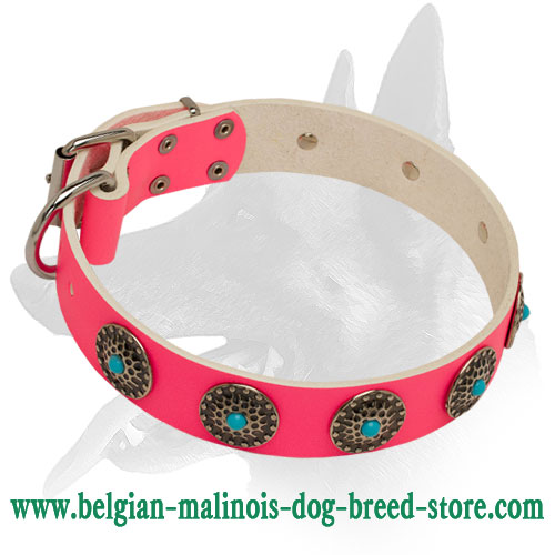 Pink Leather Belgian Malinois Dog Collar for Fashionistas
