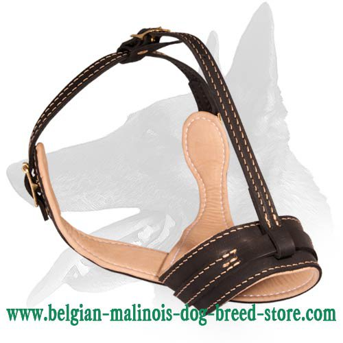 Barking Proof Leather Muzzle for Belgian Malinois