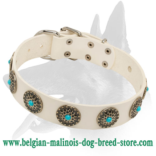 """Snow-White Treasure"" Leather Dog Collar for Belgian Malinois"