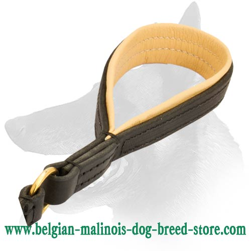 Perfect Malinois Leather Dog Leash