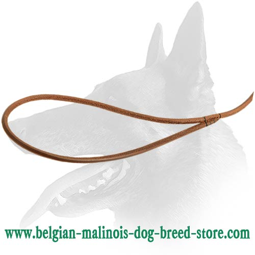 Thin Malinois Leather Leash