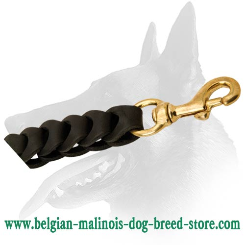 Splendid Belgian Malinois Leather Dog Leash