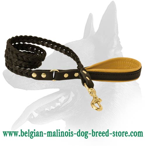 Riveted Belgian Malinois Leather Dog Leash