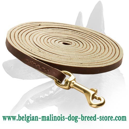 Tearproof Malinois Leather Leash