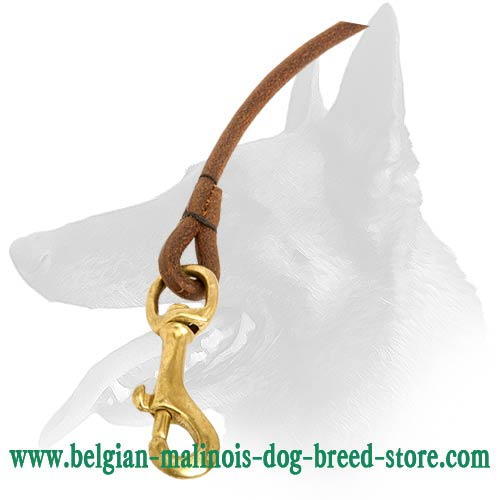 New Malinois Leather Dog Lead