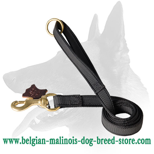 Belgian Malinois Nylon Leash With Durable Snap Hook