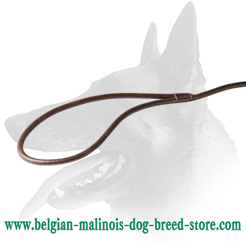 Soft to the Touch Belgian Malinois Leather Leash