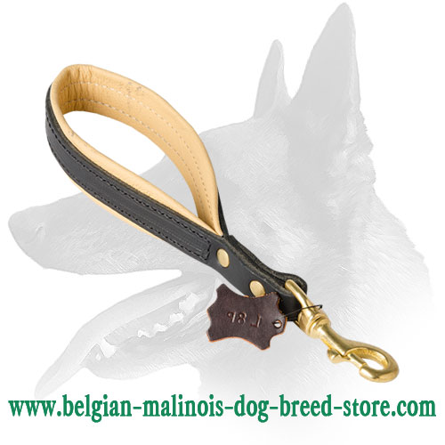Reliable Belgian Malinois Leather Leash