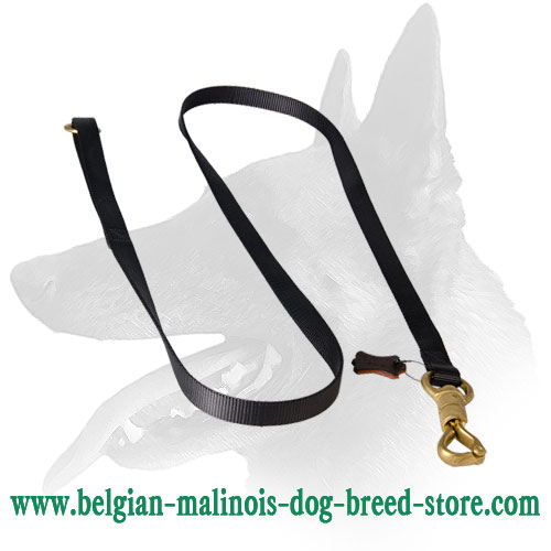 Belgian Malinois Nylon Leash With Brass Snap Hook