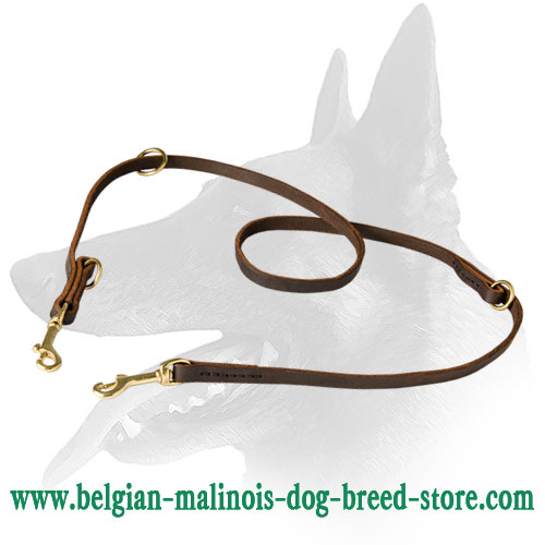 Leather Strong Leash For Active Belgian Malinois