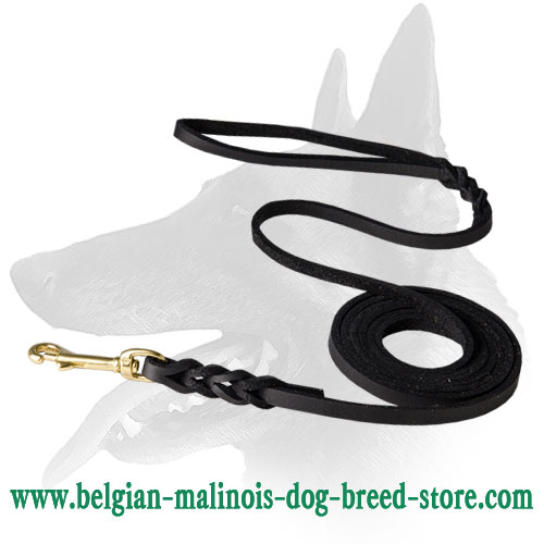 Braided Design Belgian Malinois Leash