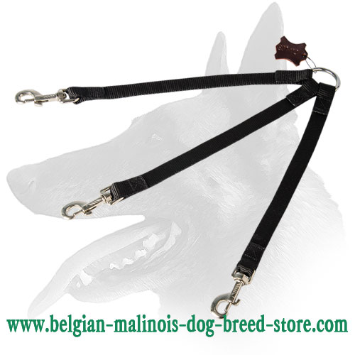 Belgian Malinois Nylon Leash With Strong O-Ring