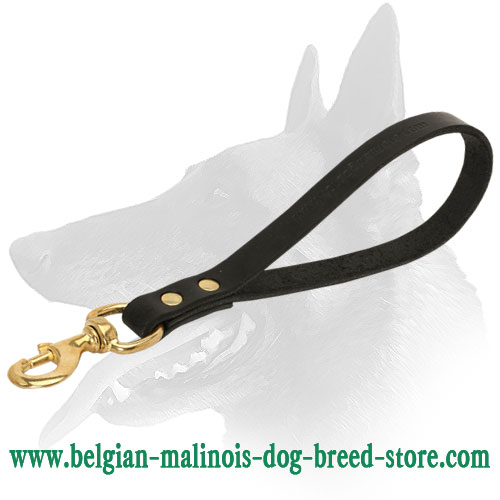 High-Quality Belgian Malinois Leather Leash