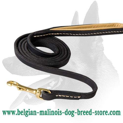 Snap Hook and Handle of Leather Belgian Malinois Leash