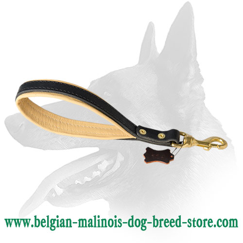 Strong Brass Snap Hook of Belgian Malinois Leather Leash