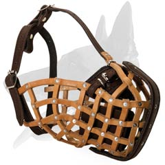 Comfortable Leather Muzzle