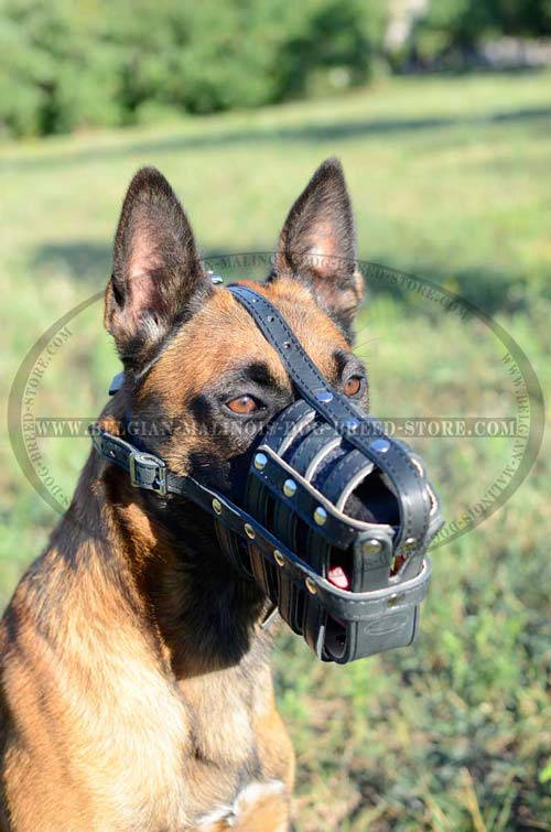 Durable Leather Muzzle