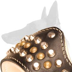 Muzzle with Pyramids and Studs