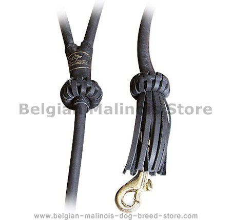 Rolled Leather Dog Leash 4 foot Round lead for Belgian Malinois