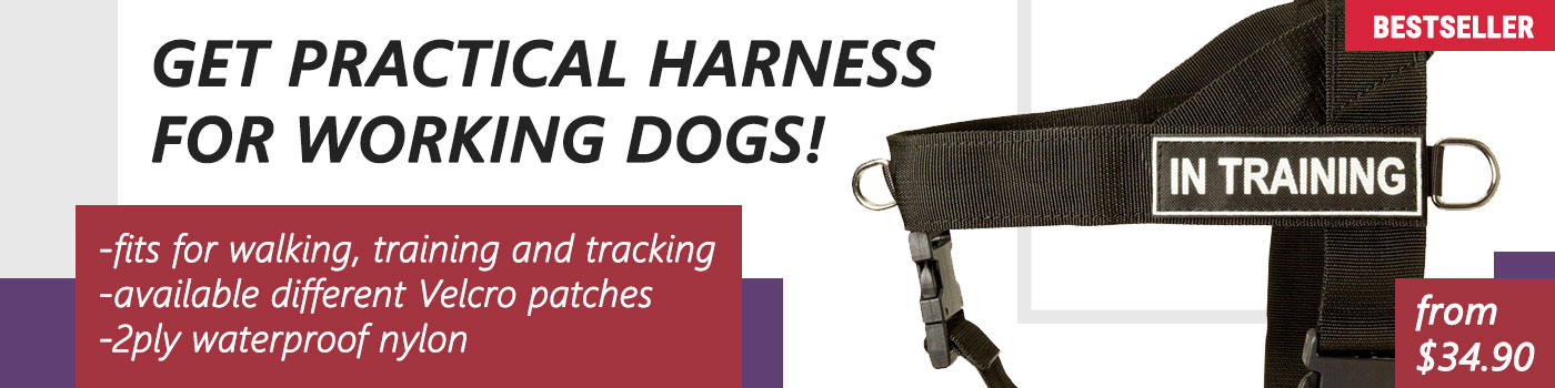 Unbelievable Nylon Dog Harness for your Belgian Malinois